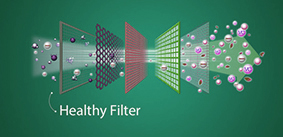 Healthy-Filter10